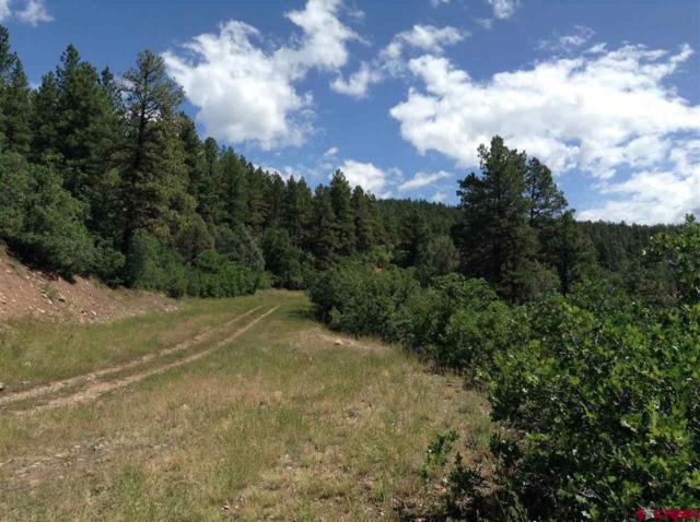 TBD Cr 205, Durango, CO 81301 (MLS #742436) :: Durango Mountain Realty