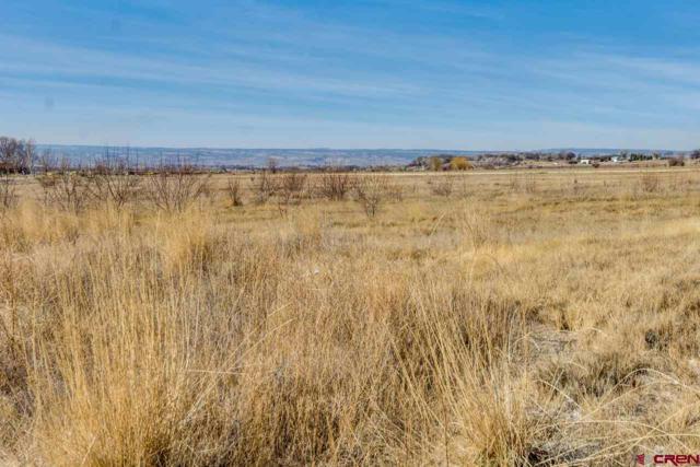 18929 Barb Acres Road, Delta, CO 81416 (MLS #742497) :: CapRock Real Estate, LLC