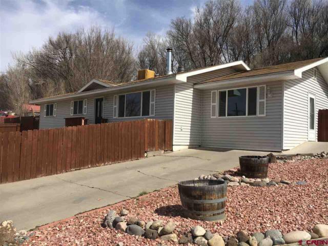 1012 Ray Avenue, Delta, CO 81416 (MLS #742500) :: CapRock Real Estate, LLC