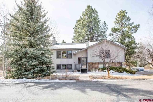 150 Aspen Drive, Durango, CO 81303 (MLS #742507) :: Durango Home Sales