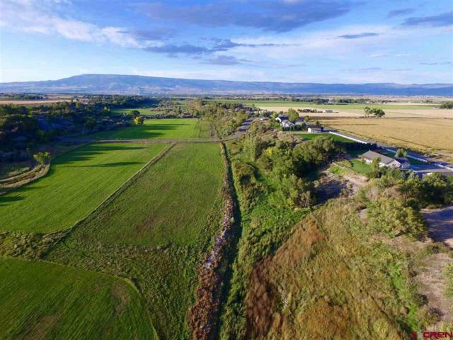 Lot 4 1650 Road, Delta, CO 81416 (MLS #742508) :: Durango Home Sales