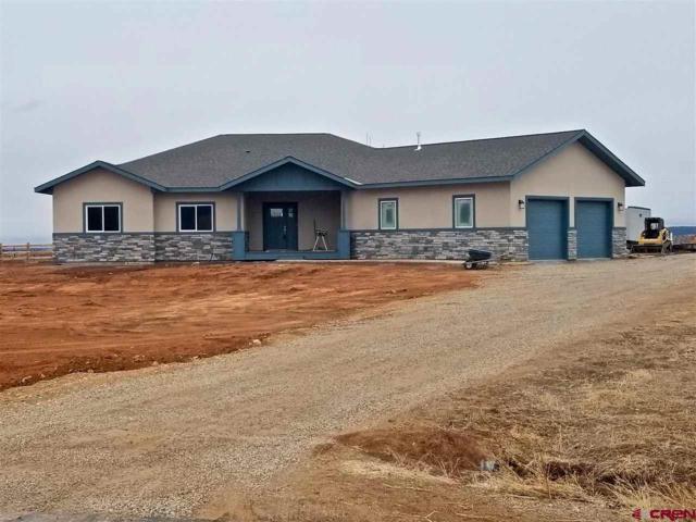 37 Encantado Court, Durango, CO 81303 (MLS #742516) :: Durango Home Sales