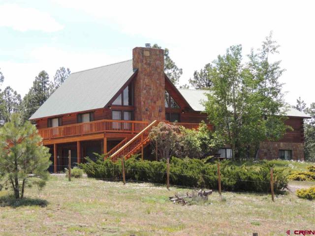 878 Loma Linda Drive, Pagosa Springs, CO 81147 (MLS #742523) :: CapRock Real Estate, LLC