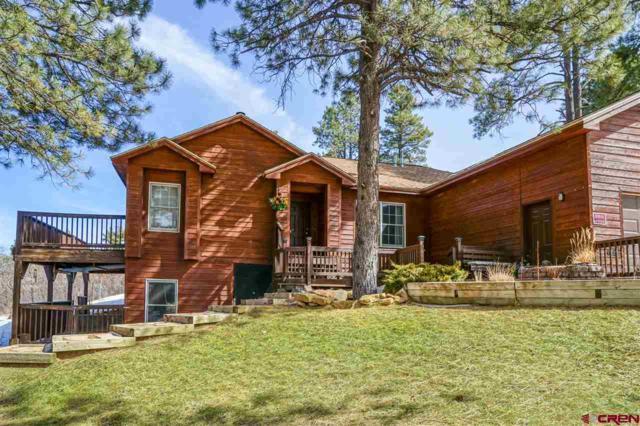 820 Alpine Forest Drive, Bayfield, CO 81122 (MLS #742581) :: Durango Home Sales