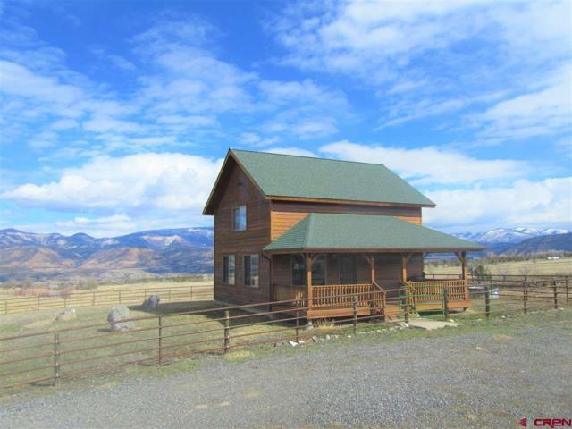 57560 Me Road, Collbran, CO 81624 (MLS #742594) :: CapRock Real Estate, LLC