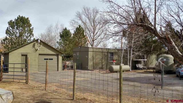 1571 N Highway 50, Delta, CO 81416 (MLS #742598) :: CapRock Real Estate, LLC
