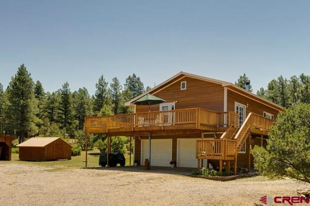 703 Cr 224, Durango, CO 81301 (MLS #742623) :: Durango Mountain Realty