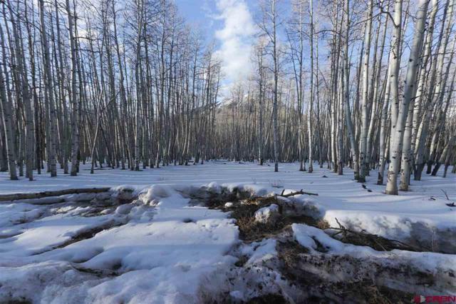 414 Star Mountain, Gunnison, CO 81230 (MLS #742634) :: Durango Home Sales