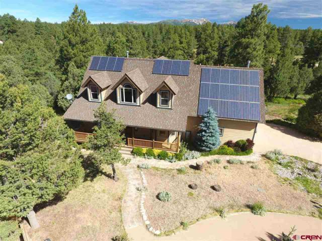 40 Tomahawk Ridge, Durango, CO 81303 (MLS #742659) :: Durango Home Sales