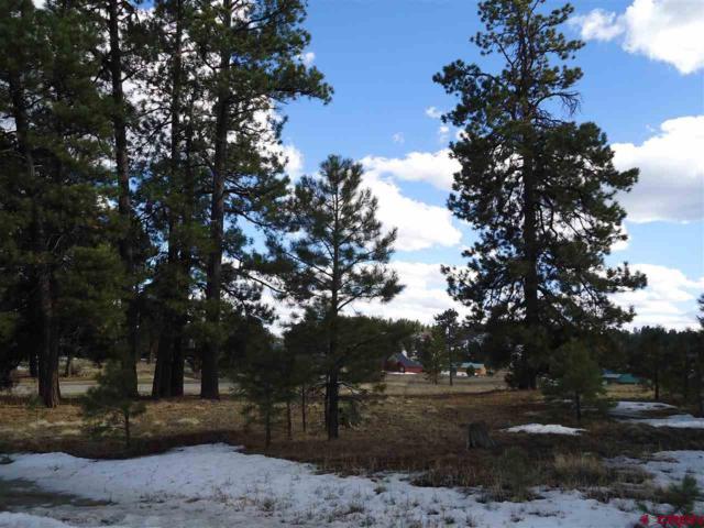 20 Monte Vista Drive, Pagosa Springs, CO 81147 (MLS #742676) :: Durango Home Sales