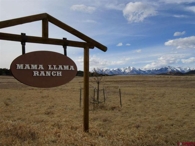 426 Mama Llama Lane, Durango, CO 81303 (MLS #742677) :: Durango Mountain Realty