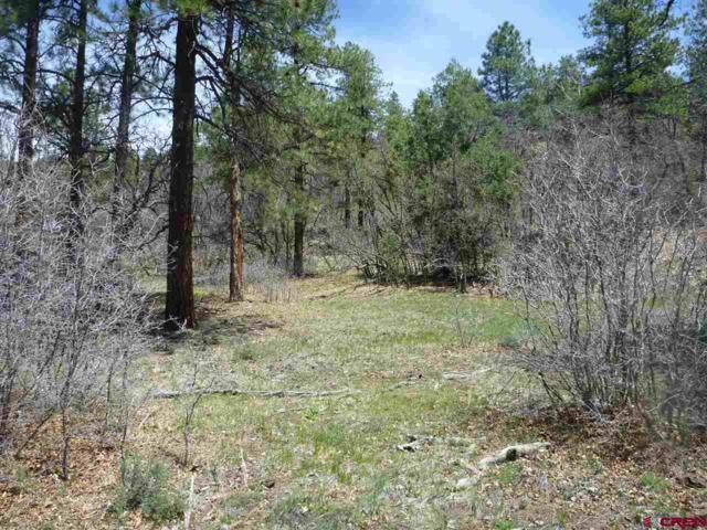 720 Starling Circle, Pagosa Springs, CO 81147 (MLS #742698) :: Durango Home Sales