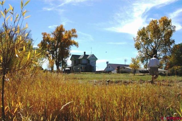 1805 Grand Avenue, Norwood, CO 81423 (MLS #742743) :: CapRock Real Estate, LLC
