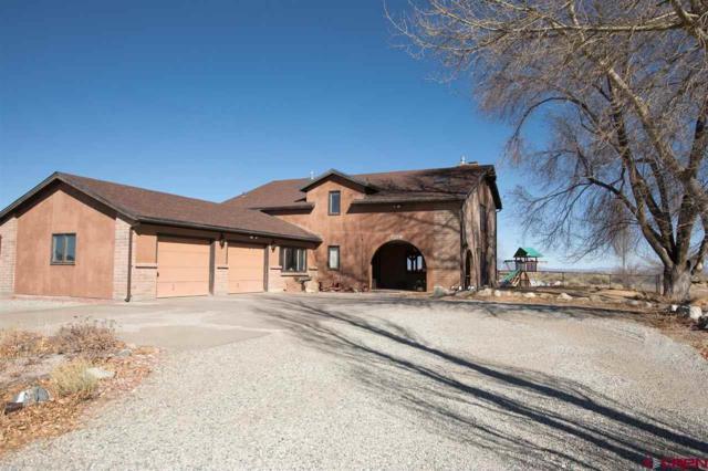 5802 Aspen Avenue, Alamosa, CO 81101 (MLS #742744) :: CapRock Real Estate, LLC