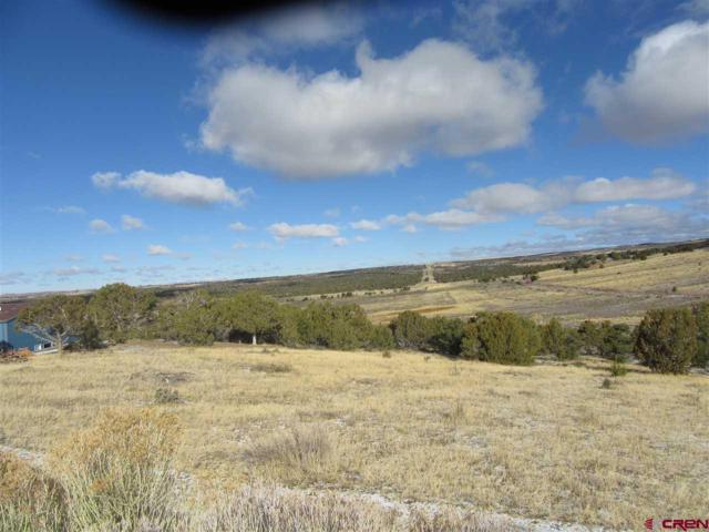 24781 Road V.5 #G  Lot#19, Dolores, CO 81323 (MLS #742746) :: Durango Home Sales