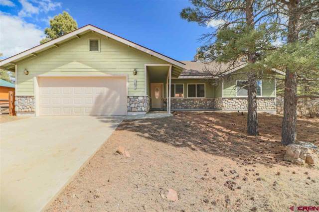 185 Lakewood Street, Pagosa Springs, CO 81147 (MLS #742754) :: Durango Home Sales