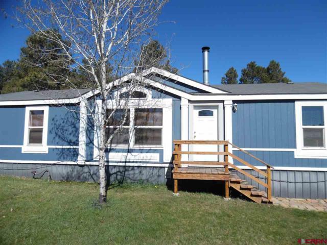 229 Highland Avenue, Pagosa Springs, CO 81147 (MLS #742803) :: Durango Home Sales
