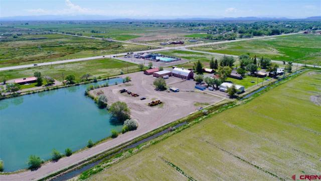 5895 State Hwy 17, Alamosa, CO 81101 (MLS #742815) :: CapRock Real Estate, LLC