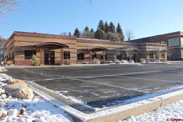 135 Burnett Drive #1, Durango, CO 81301 (MLS #742820) :: Durango Home Sales