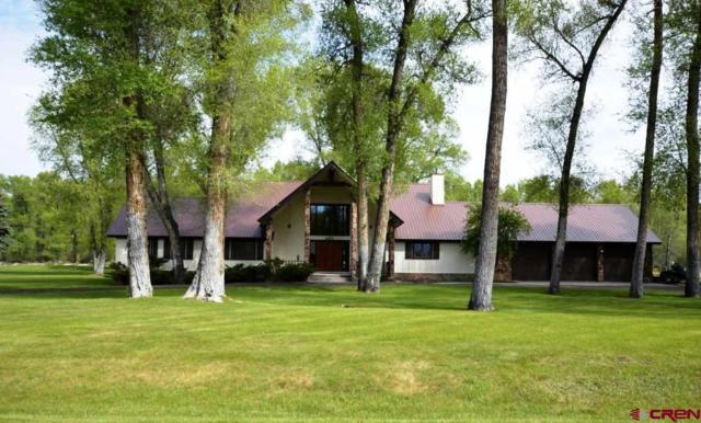 463 Tomichi Trail, Gunnison, CO 81230 (MLS #742823) :: CapRock Real Estate, LLC