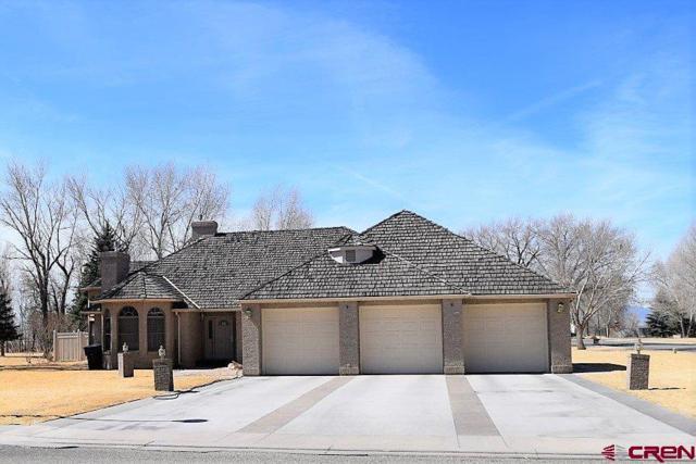 225 Driftwood Place, Alamosa, CO 81101 (MLS #742907) :: CapRock Real Estate, LLC