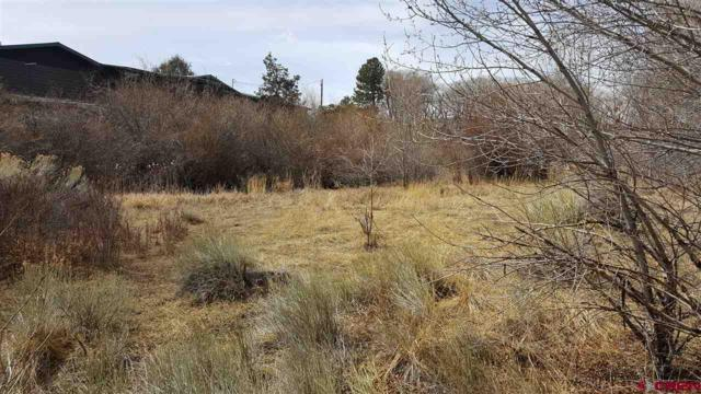 128 Ute Trail, South Fork, CO 81154 (MLS #743011) :: Keller Williams CO West / Mountain Coast Group