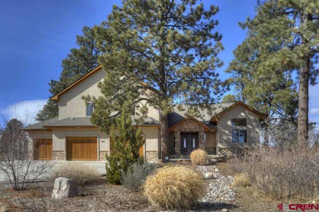 381 Aspen Drive, Durango, CO 81301 (MLS #743013) :: Durango Mountain Realty
