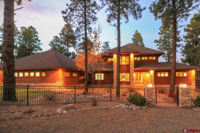 1801 Hidden Valley Drive, Pagosa Springs, CO 81147 (MLS #743119) :: Durango Home Sales