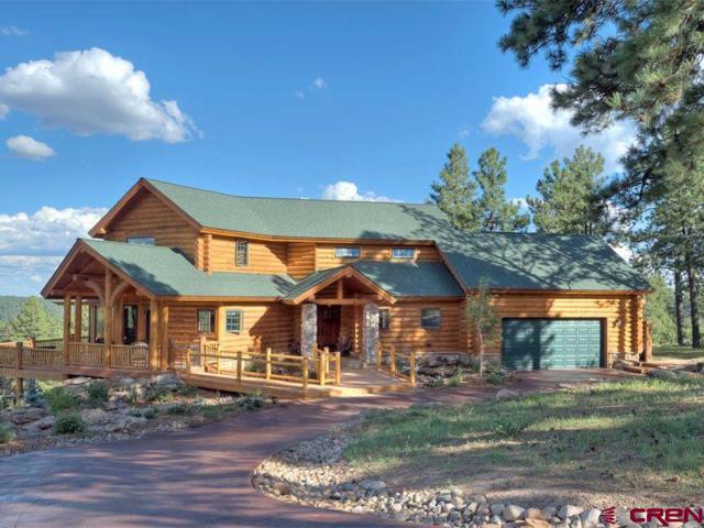 281 Tristan Trail, Durango, CO 81301 (MLS #743167) :: Durango Mountain Realty