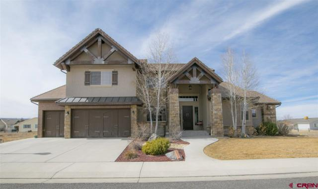 2432 Bear Lake Drive, Montrose, CO 81401 (MLS #743214) :: Durango Home Sales