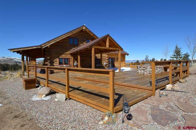 8350 High Country Road, Gunnison, CO 81230 (MLS #743257) :: CapRock Real Estate, LLC
