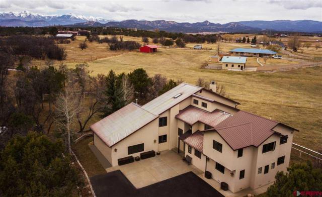 422 Meadowlark Ln., Durango, CO 81303 (MLS #743286) :: Durango Mountain Realty