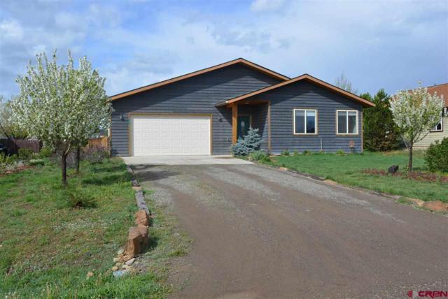 34 Settler Drive, Pagosa Springs, CO 81147 (MLS #743289) :: Durango Home Sales