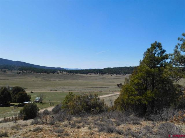 102,128 and 266 West View Road, Pagosa Springs, CO 81147 (MLS #743310) :: CapRock Real Estate, LLC