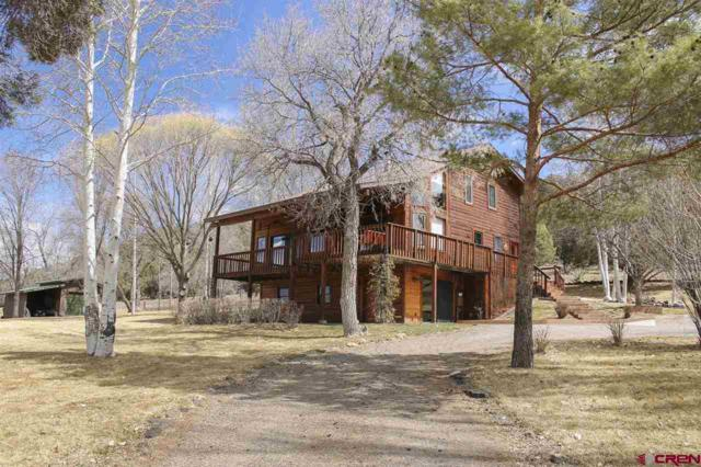 484 N Hylander Road, Durango, CO 81303 (MLS #743318) :: Durango Mountain Realty