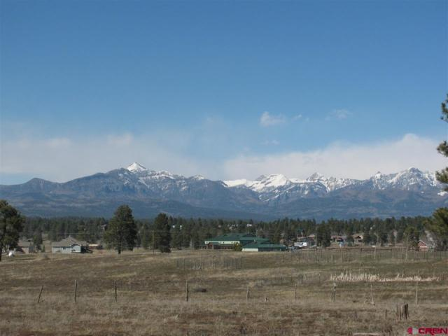 1458 Cool Pines Dr., Pagosa Springs, CO 81147 (MLS #743322) :: Durango Home Sales