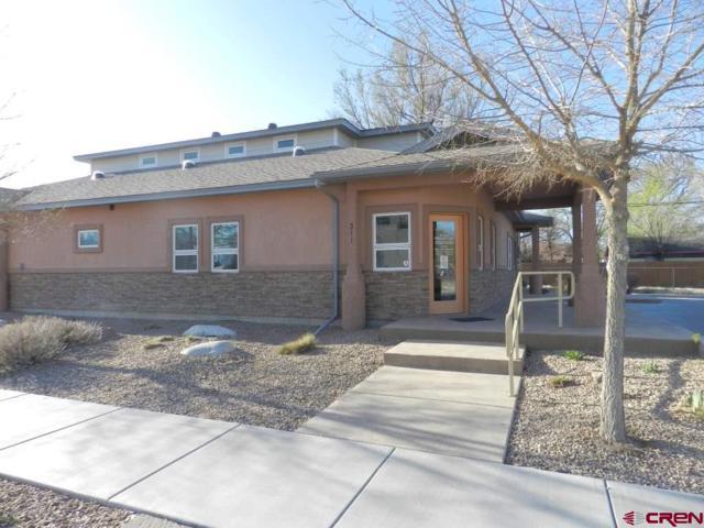 311 Palmer Street, Delta, CO 81416 (MLS #743339) :: CapRock Real Estate, LLC