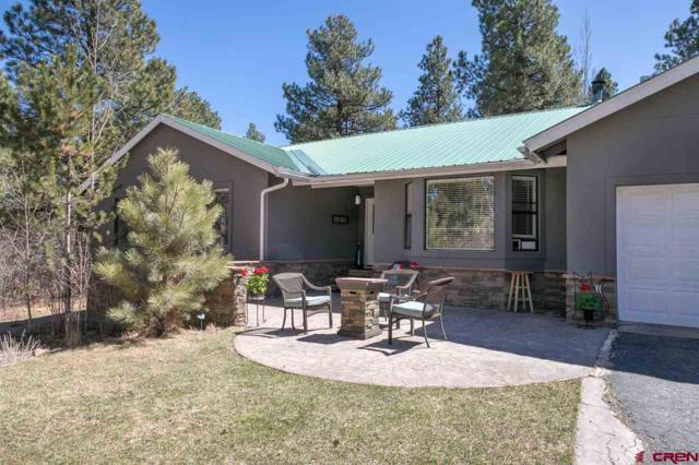 303 Shenandoah Road, Durango, CO 81303 (MLS #743381) :: Durango Home Sales
