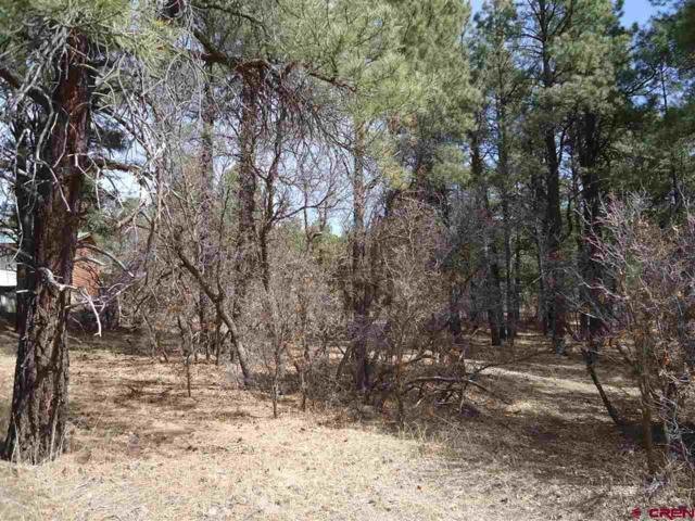 267 Aspenglow Boulevard, Pagosa Springs, CO 81147 (MLS #743401) :: Durango Home Sales
