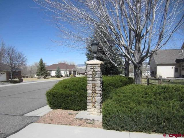 4117 Waterfall, Montrose, CO 81401 (MLS #743403) :: CapRock Real Estate, LLC