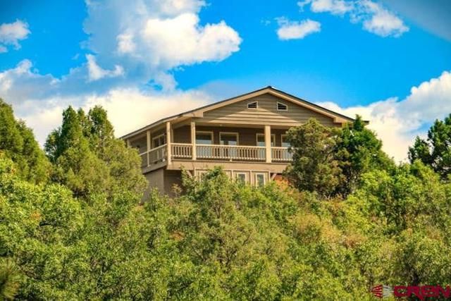 1649 Carino Place, Pagosa Springs, CO 81147 (MLS #743405) :: Durango Home Sales