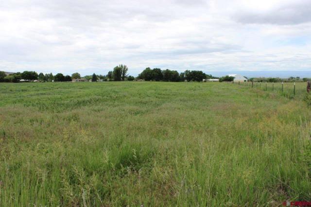 TBD North Road, Eckert, CO 81418 (MLS #743462) :: The Dawn Howe Group | Keller Williams Colorado West Realty