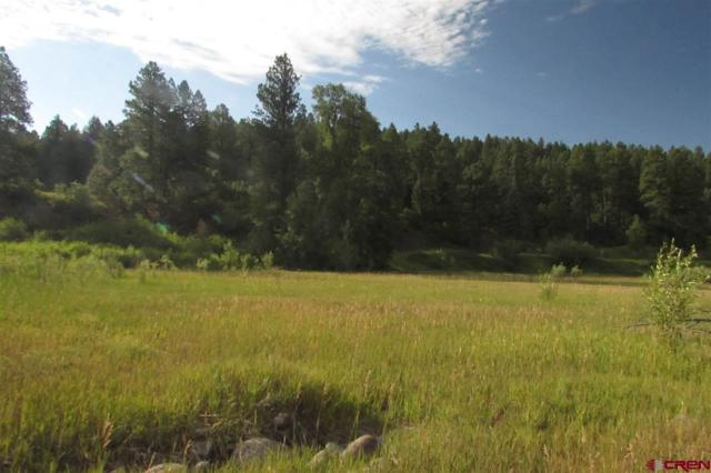 366 Red Ryder Circle, Pagosa Springs, CO 81147 (MLS #743479) :: Durango Home Sales