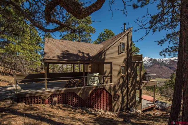450 Oakcrest Drive, Durango, CO 81301 (MLS #743508) :: Durango Mountain Realty