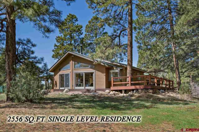 664 Colonial Drive, Durango, CO 81303 (MLS #743519) :: Durango Mountain Realty