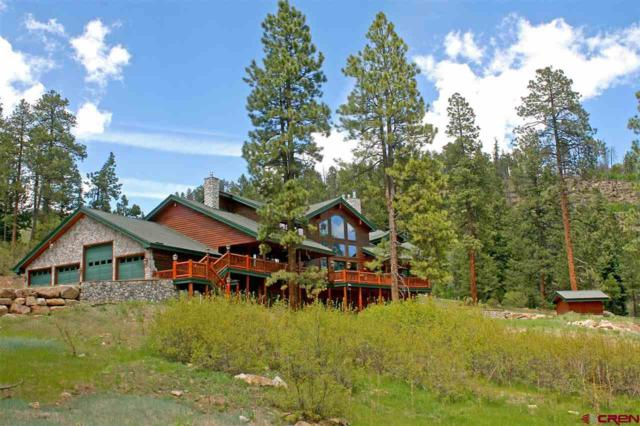 780 Trew Creek Road, Durango, CO 81301 (MLS #743522) :: Durango Mountain Realty