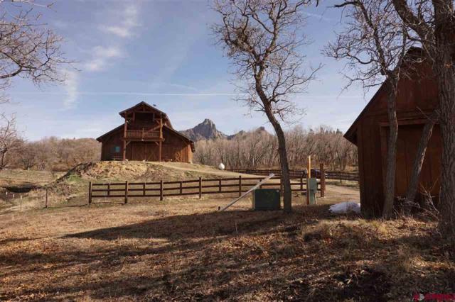 75 E Anasazi Court, Chromo, CO 81128 (MLS #743524) :: CapRock Real Estate, LLC