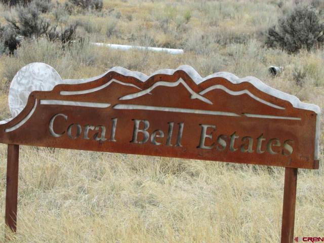Lot 1 Mountain Vista Court, Montrose, CO 81403 (MLS #743537) :: CapRock Real Estate, LLC