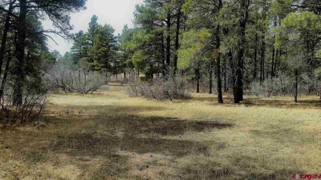 422 Legends, Pagosa Springs, CO 81147 (MLS #743548) :: CapRock Real Estate, LLC