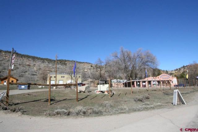 1929 S Hwy 550, Durango, CO 81303 (MLS #743564) :: CapRock Real Estate, LLC